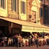 繁盛する飲食店の共通点その6【メニューブック】他【飲食店・居抜き店舗:今週のまとめ】