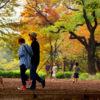 世田谷区 駒沢大学駅 徒歩7分 1階路面 洋食店居抜き店舗で飲食店開業できる