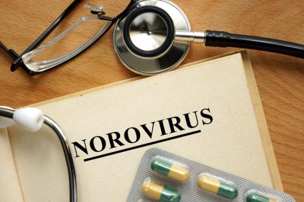 norovirus-faq